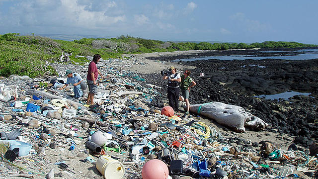 pacific_ocean_garbage_patch_pollution_plastic_junk_beach_hawaii_q_48895